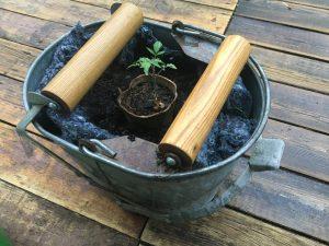 tomato plant in kodiakotton lined planter