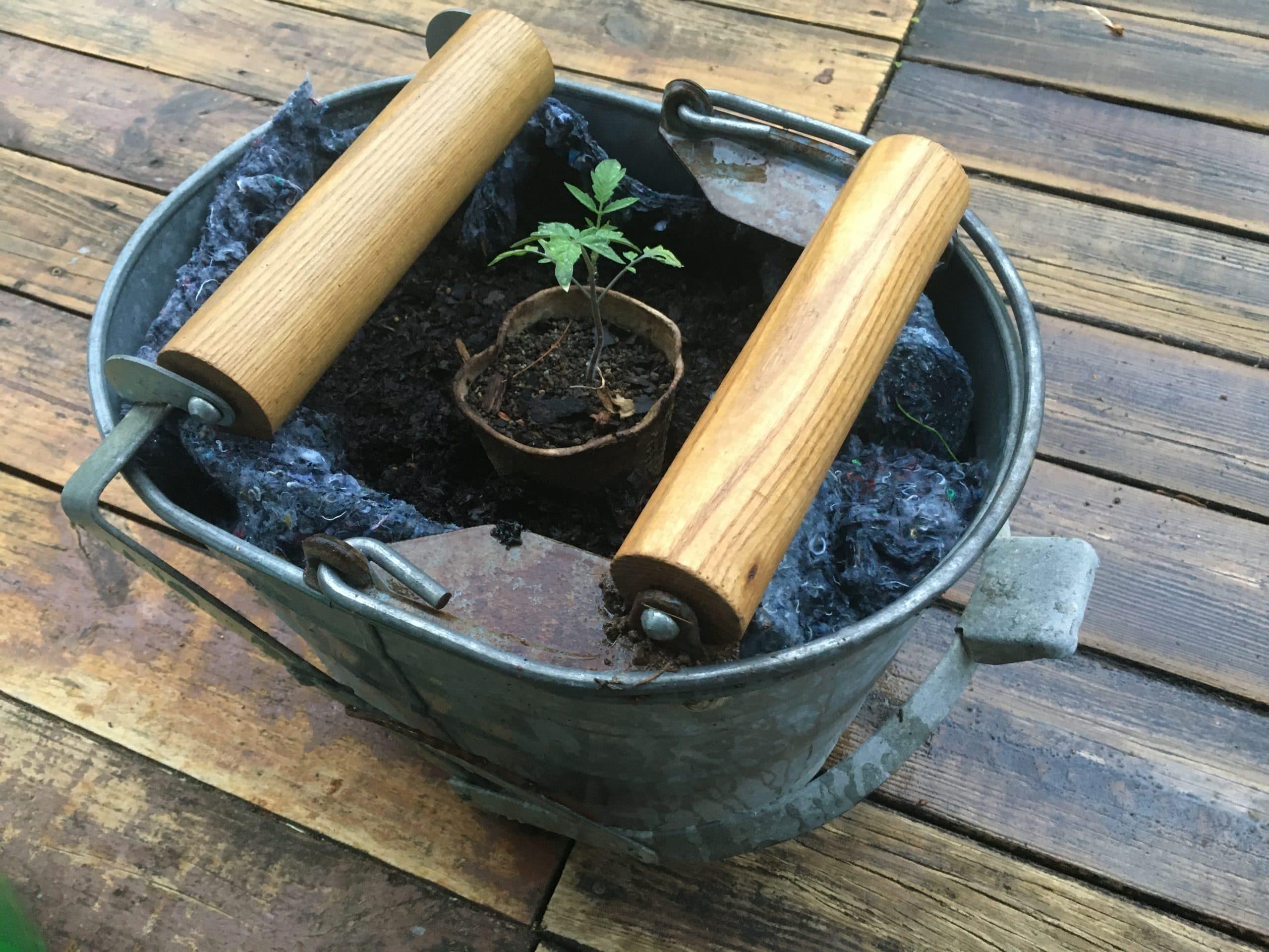 Planter Liner Reuse – Part 2