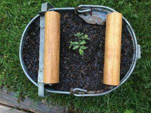 planter reuse idea